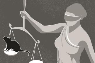Pencabutan Hak Politik Terdakwa Kasus Korupsi di Mata Penegak Hukum