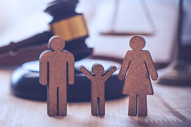 Seluk Beluk Hukum Keluarga
