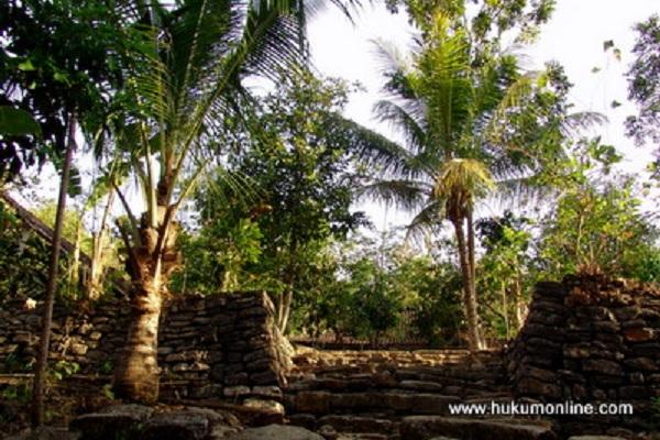Perkebunan kelapa sawit. Foto: Documen Hol.